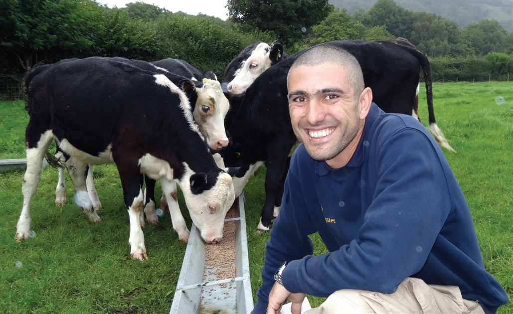Hollins Farm park manager Daniele Balia with some of the Holstein Friesian cattle which greet holidaymakers
