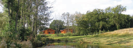 ABOVE: Woodside Lodges Country Park's green policies have made it a magnet for wildlife.