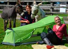 Carers at the Donkey Sanctuary adjacent to Oakdown Holiday Park near Sidmouth are ready to welcome park guests for a VIP donkey experience.